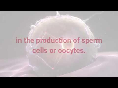 Everyday Science| General Science |FPSC PPSC NTS AD NAB IB FIA ICS NDA FIA |Video 39