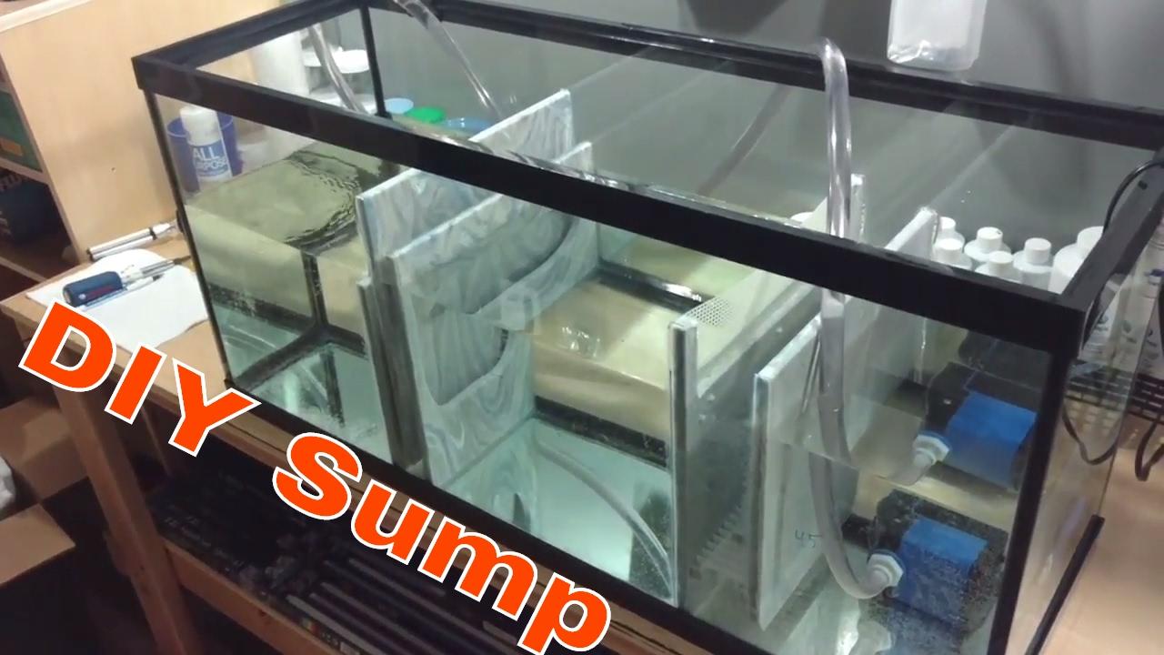 diy sump reef tank upgrade youtube