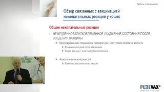 Жан-Кристоф Тибо - Вакцинация кошек: Достаточно, но не чрезмерно - и продуманно выбирая вакцины