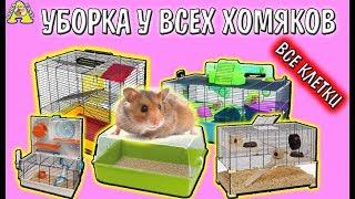 ВСЕ КЛЕТКИ МОИХ ХОМЯКОВ / УБОРКА у ВСЕХ ХОМЯКОВ / Cleaning hamster's cages / Алиса Изи