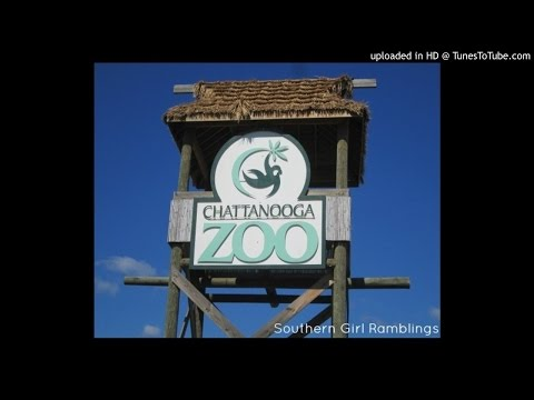 Episode #7- Chattanooga Zoo