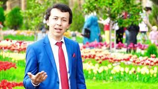 Мухаммадрасул Муминов - Дили ман