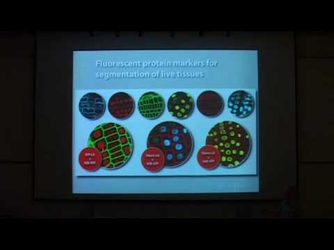 Agriculture & Plant Genetic Engineering 1