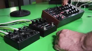Moog Subharmonicon + Eventide Blackhole + Teile Teil1