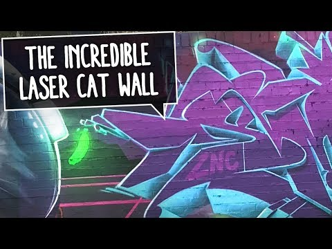 THE LASER CATS WALL | Kayo, Creis & Smoe painting Graffiti in Warendorf