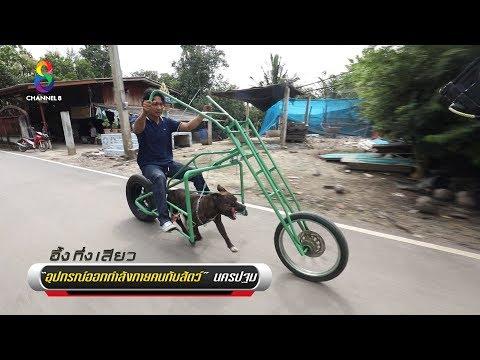จักรยานสุนัข | อึ้งทึ่งเสียว