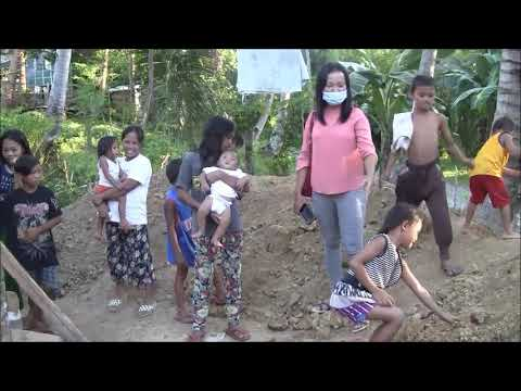 WE ARE ATTACK BY MILLIONS OF INSECTS IN THE NIGHT ? VERY SCARY EXPAT LIFE IN THE PHILIPPINES from YouTube · Duration:  4 minutes 6 seconds