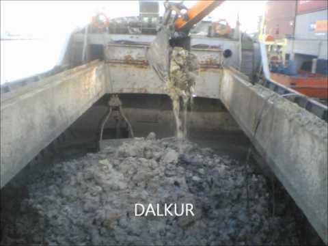 Dalkur Deniz Tarama