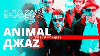 Animal ДжаZ // ВОЗДУХ // НАШЕ