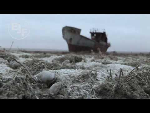 Aral Sea Cotton Environmental Disaster Lethal
