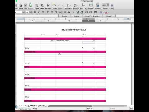 Spreadsheet of Expenses/Income for your Beachbody Business