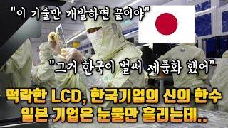 떡락한 LCD, 한국기업의 신의 한수 눈물만 흘리게 생긴 일본 기업...