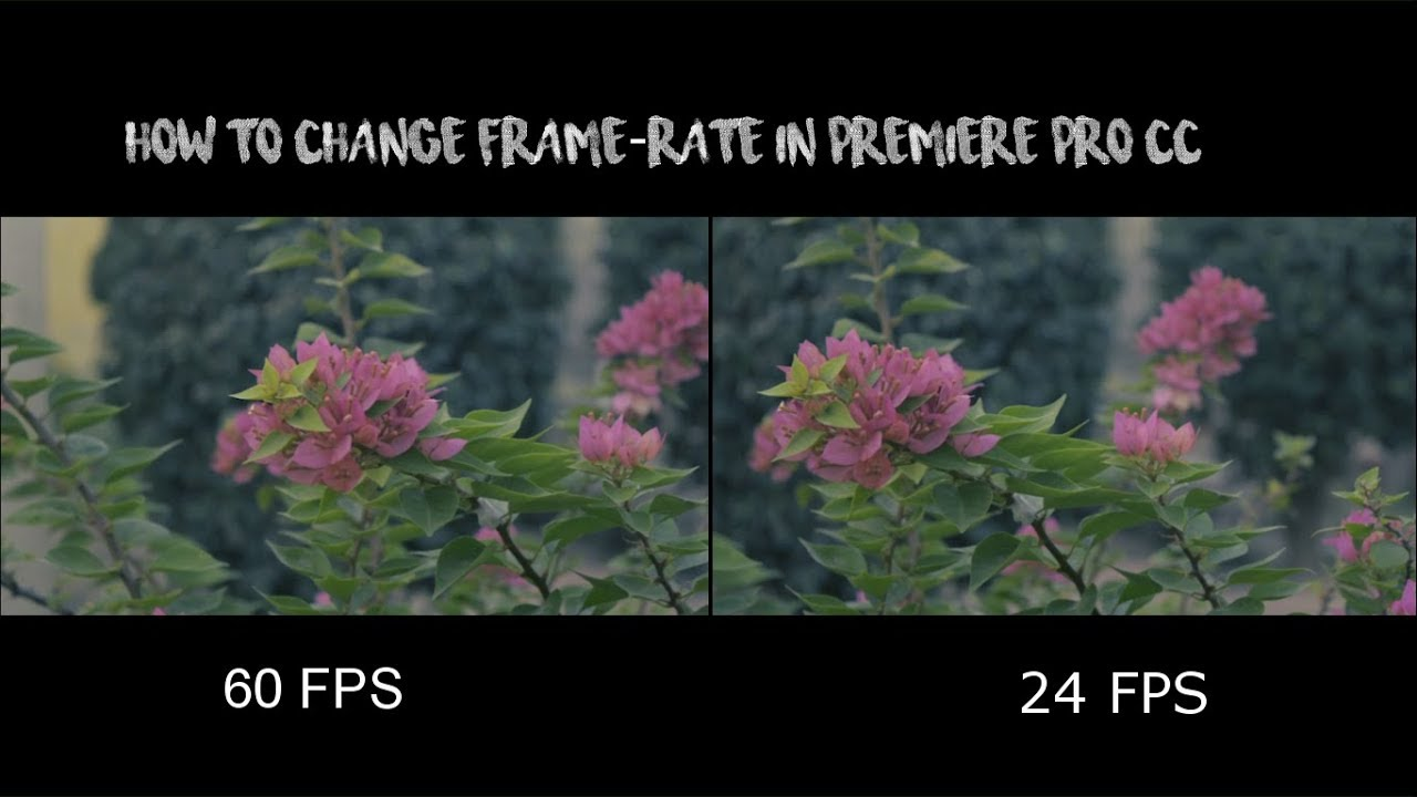 How to change framerate in premiere pro cc - YouTube