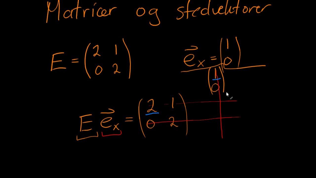 Vektorer og matricer