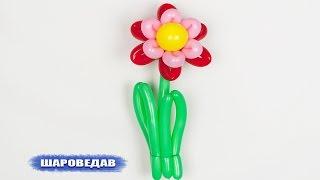 🌸Цветок из шаров своими руками / Flower of balloons with their own hands(Как сделать #цветок из #шариков, в этом видео.#Твистинг •Мой канал YouTube: http://www.youtube.com/user/sharovedas Компания
