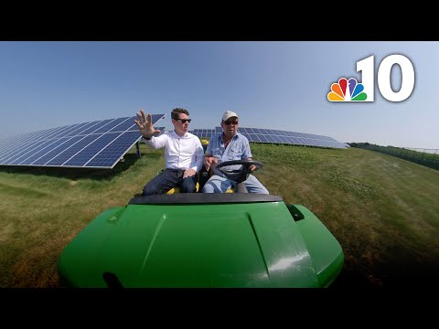'We're Farming Sun': Pioneering Pennsylvania Farmer Ditched Corn Rows for Solar Panels