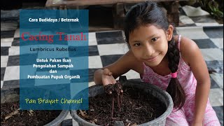 Cara Budidaya Cacing Tanah Sederhana Utk Pakan Pengolahan Sampahdan Pupuk Organik Kascing