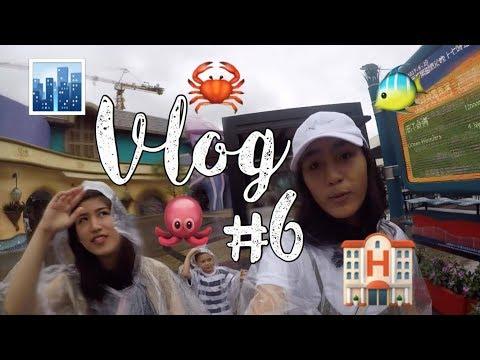 vlog-#6:-hong-kong-ocean-park-and-disneyland-hotel