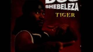Doc Shebeleza Mvembeni