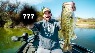this Lure is the JUICE!! - BIG SPRING BASS FISHING