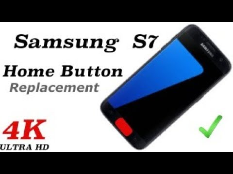 Samsung S7 Home Button Not Working