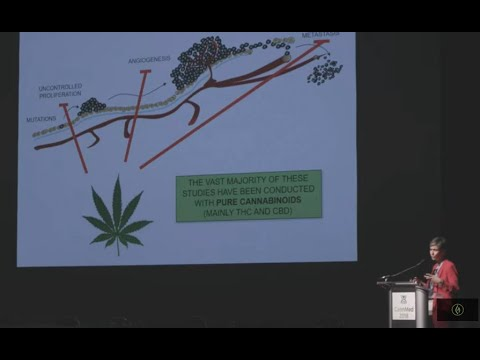 Fighting Breast Cancer w/Cannabis: Anti-Tumor Effects of Cannabinoid Therapies/ Dr. Cristina Sanchez