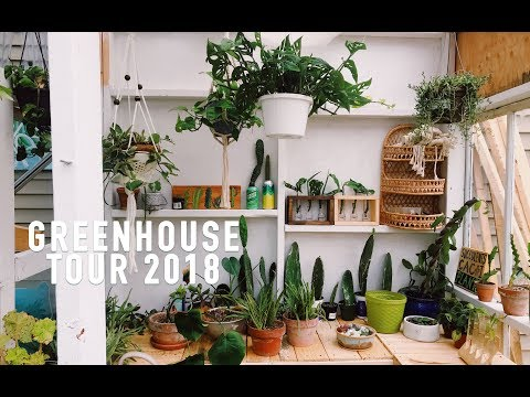 Greenhouse Tour August 2018