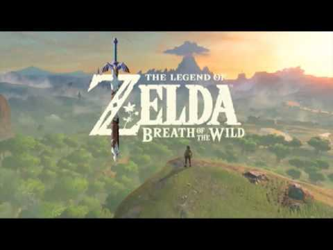 Breath of the Wild: Old Man Theory Compilation