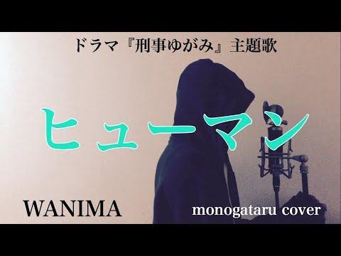 【フル歌詞付き】 ヒューマン (ドラマ『刑事ゆがみ』主題歌) - WANIMA (monogataru cover)