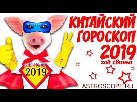 Китайский гороскоп 2019: восточный гороскоп для всех знаков китайского календаря на 2019 год