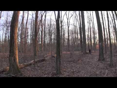 ZEIKOS Super Wide Fisheye Lens - Review