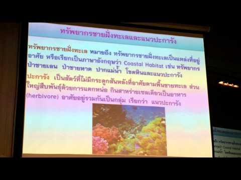 MAN AND ENVIRONMENT ทรัพยากรธรรมชาติและการอนุรักษ์ 14/08/2014