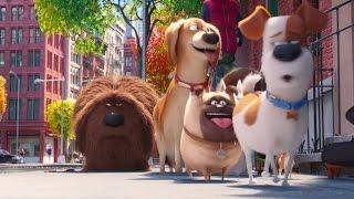 Тайная жизнь домашних животных (2016)   Трейлер #2 HD