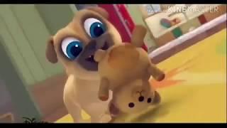 Дружные мопсы клип Мот день и ночь