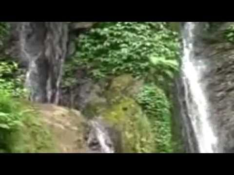 Caping Gunung - Gesang