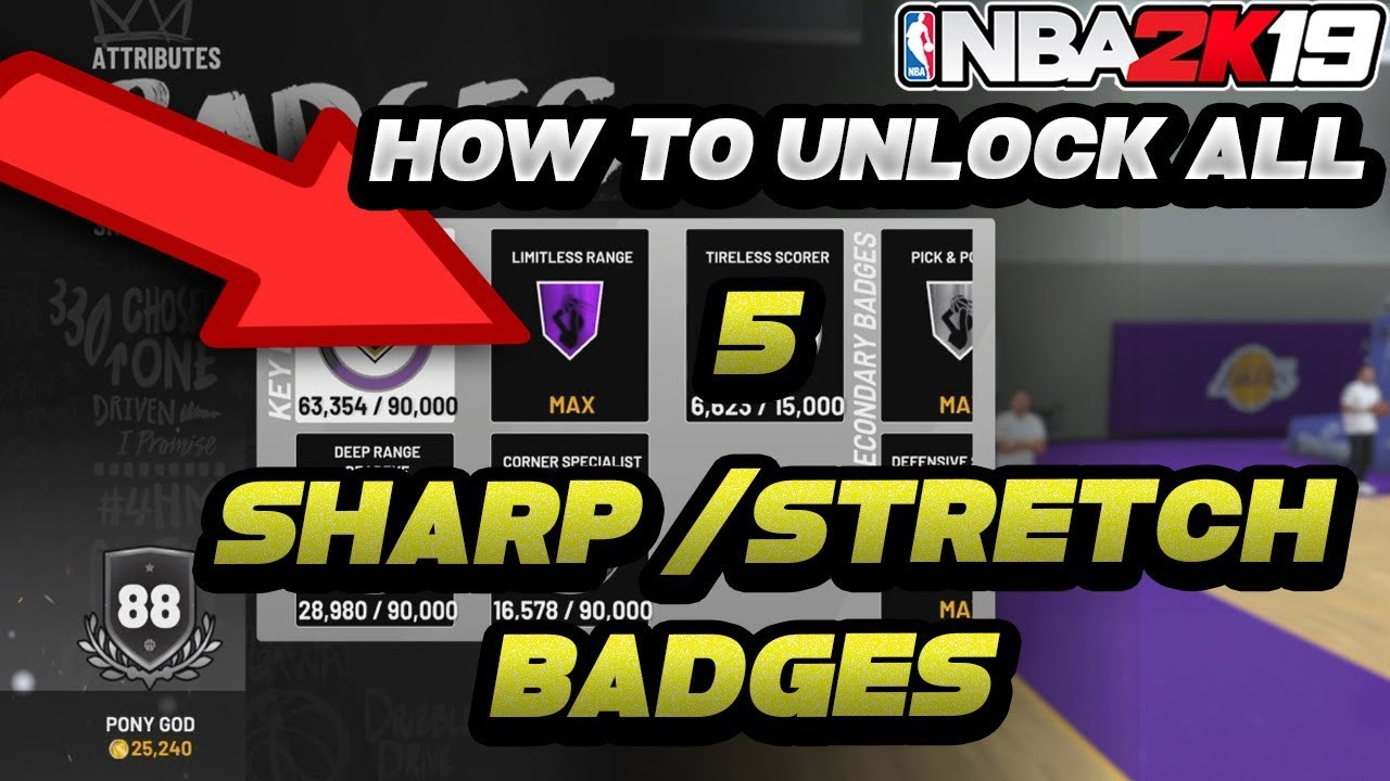 FASTEST WAY TO GET ALL 5 Sharpshooter & Stretch Big badges & Tireless  Scorer!! On HoF On NBA 2K19