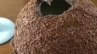 Chocolate cake | Satisfying videos