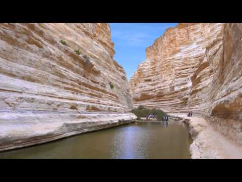 Looking At Israel Tours? Book An Amazing Israel Tour- Watch Now!