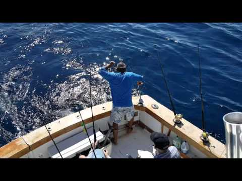 Catching a wahoo on our ft lauderdale deep sea fishing for Deep sea fishing fort lauderdale