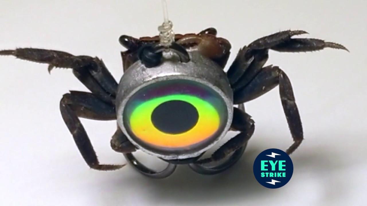 Fiddler Crab Sheepshead Jigs