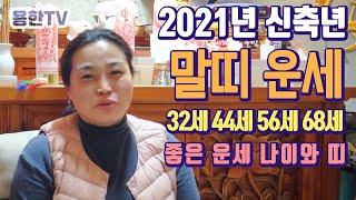2021년 신축년 말띠 운세 ( 32세 44세 56세 68세 ) 좋은 운세 나이와 띠 - 안양 설연신당 [용…