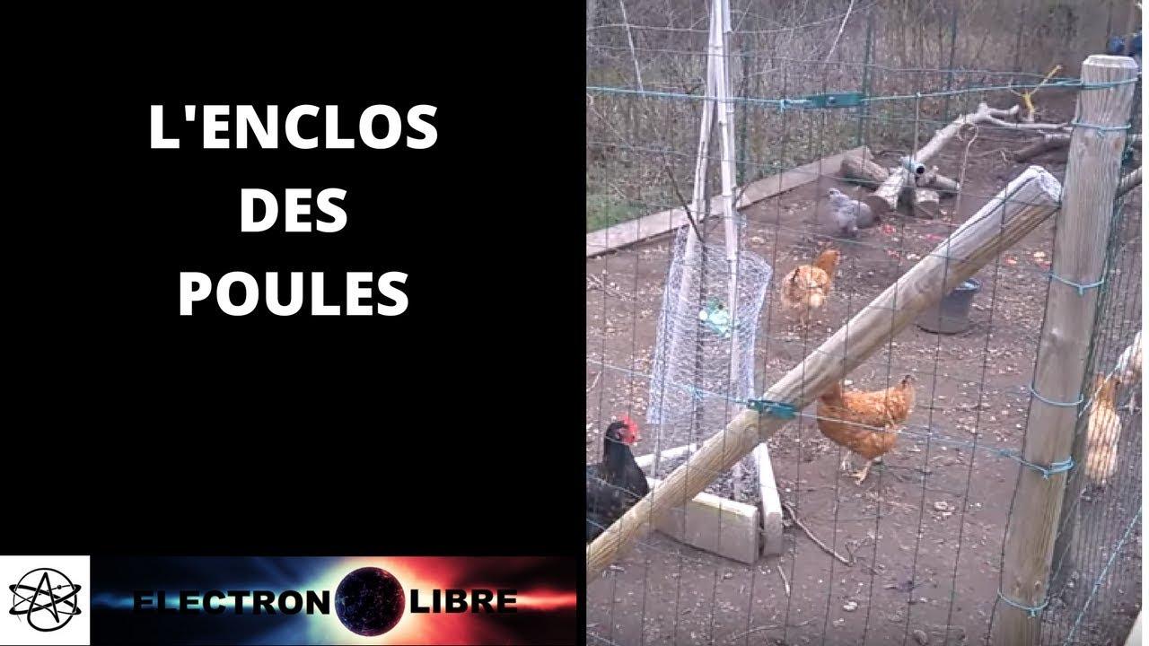 L 39 enclos des poules youtube - Enclos a poule ...