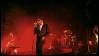 Alain Bashung à l'Olympia - Samuel Hall