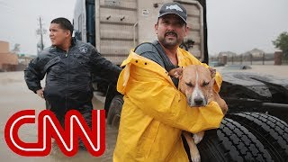 What Hurricane Harvey left behind