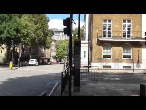 Chelsea London jog