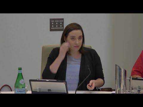 Ordinary Meeting - 14 November 2017