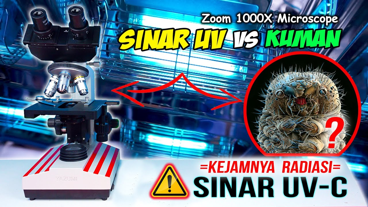 BAKTERI JAHAT vs SINAR UV | UVC Light vs Microbes Microscope Zoom 1000X