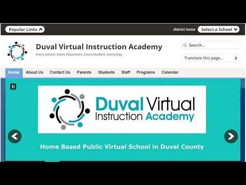 What is Duval Virtual Instruction Academy?