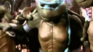 ninja turtles the next mutation episode 021 like brothers online in high quality