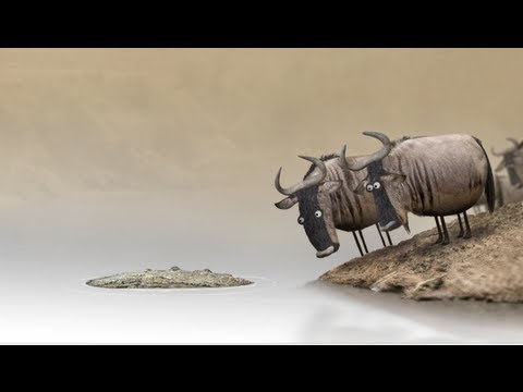 Birdbox Studio's viral animated short, Wildebeest